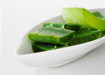 4 Reasons to Use Aloe Vera Shampoo