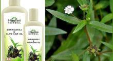 bhringraj-hair-oil