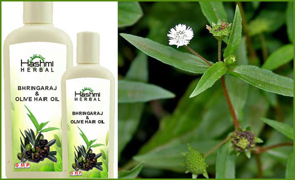 bhringraj-hair-oil