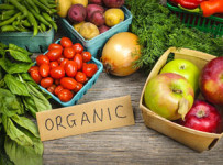 organic food for good health