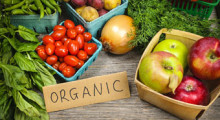 Turn to Organic Foods to Stay Fit and Healthy