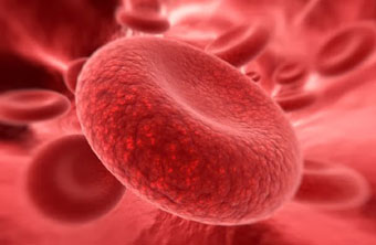 Red Blood Cell Disorders and Diseases: An Overview